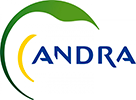 Logo Reference Andra