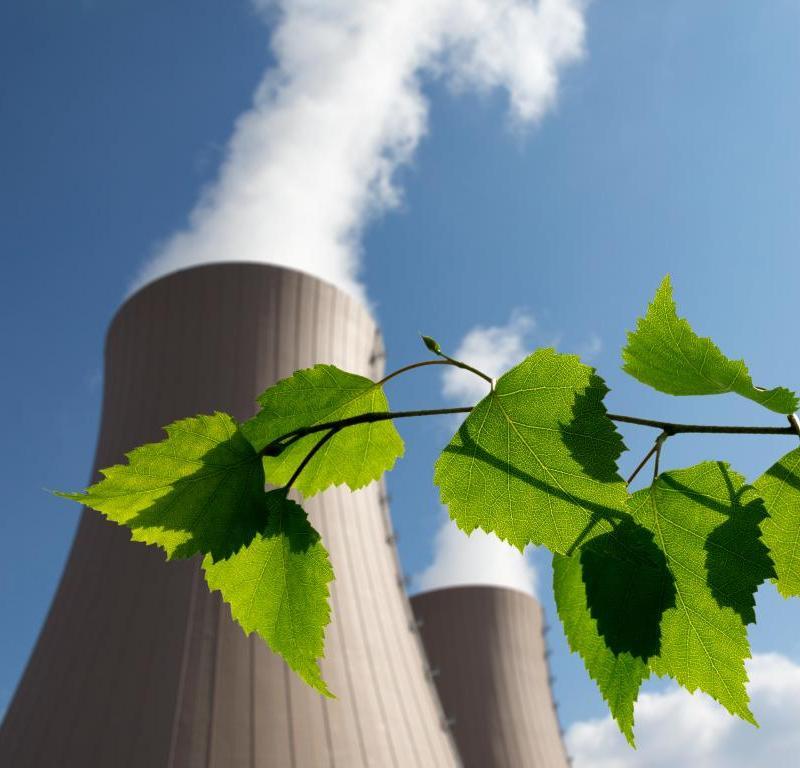 PPE : Priorité au bas carbone