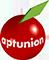 APTUNION - Apt (84)